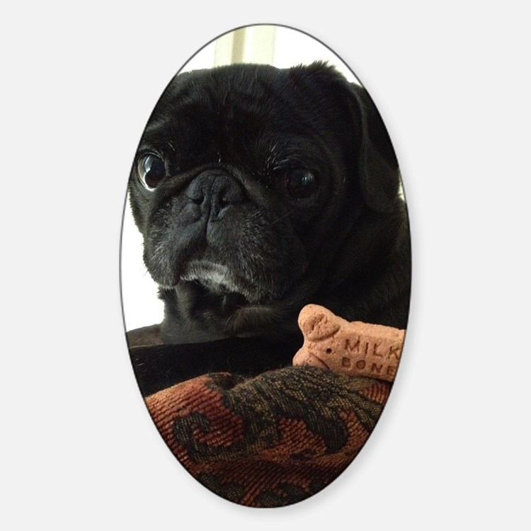 Onyx the Pug Decal