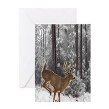 Winter Majesty Large Greeting Card