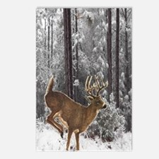 Winter Majesty Large Postcards (Package of 8)