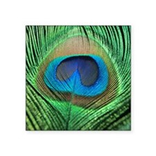 """Peacock Feather Square Sticker 3"""" x 3"""""""