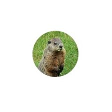 Woodchuck Eating Mini Button