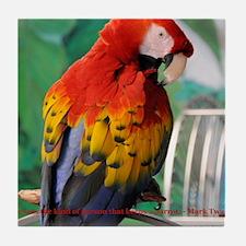 Scarlet Macaw JM Csaky Tile Coaster