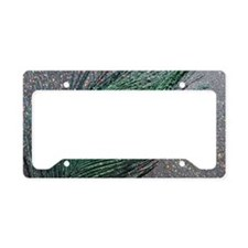 Sparkly Black Peacock License Plate Holder