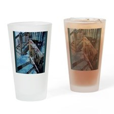 The Old Rugged Steps Drinking Glass