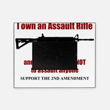 AR 15 Picture Frame