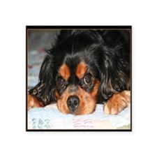 """Puppy King Charles Spaniels Square Sticker 3"""" x 3"""""""