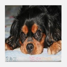 Puppy King Charles Spaniels Pillow Tile Coaster