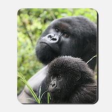 Mountain Gorilla Father  Son Mousepad