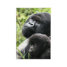 Mountain Gorilla Father  Son Rectangle Magnet