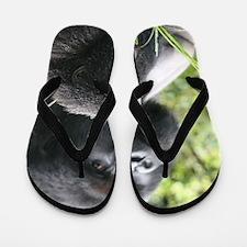 Mountain Gorilla Father  Son Flip Flops