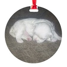 Tiny Pup Ornament