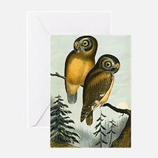John Cassin California Owl Greeting Card