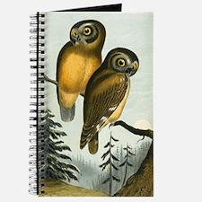 John Cassin California Owl Journal