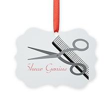 Shear Genius Picture Ornament