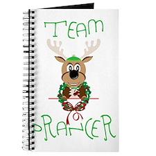 Team Prancer Journal