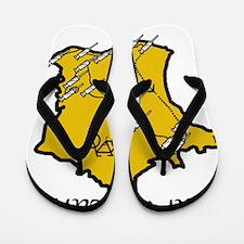 Tour de Lance 2 Flip Flops
