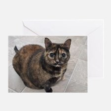 Riley-I support Blind Cat Rescue Greeting Card