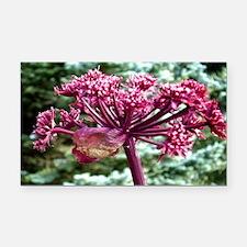 Purple Angelica Rectangle Car Magnet