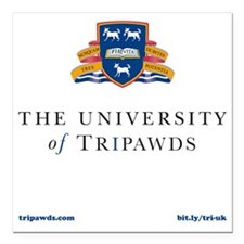 "Tripawds University Square Car Magnet 3"" x 3"""