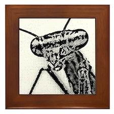mantis 1.08 Framed Tile