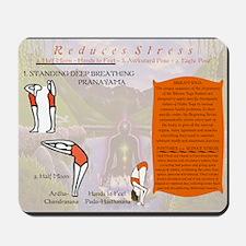 Bikram Yoga Postures #1 and #2 Mousepad