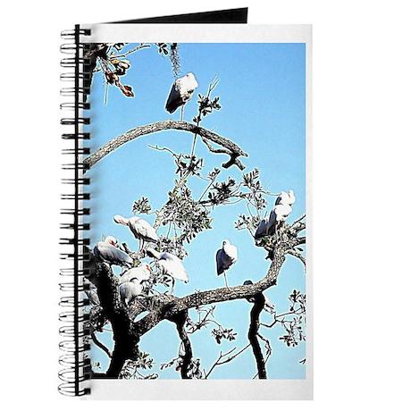 blue birds Journal