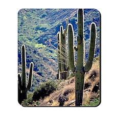 Saguaro Cactus Mousepad