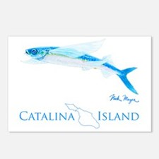 Flying Fish Catalina Isla Postcards (Package of 8)