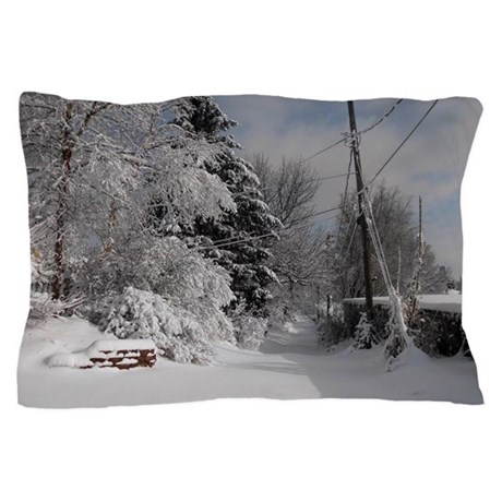 Picture Ornament Pillow Case