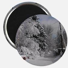 Round Ornament Magnet