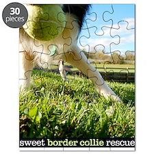 Series 1 Puzzle