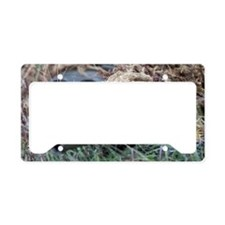 Reach out and touch someone! License Plate Holder