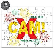 CAM2013FWDark Puzzle