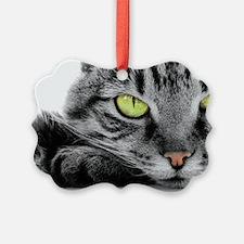 grey cat green eyes Ornament