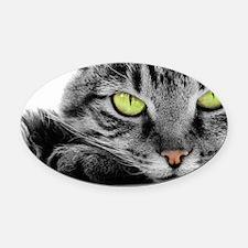 grey cat green eyes Oval Car Magnet