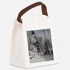 Teardrop Charm Canvas Lunch Bag