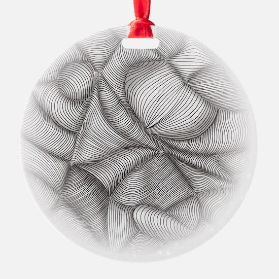 Lines of Illusion Ornament