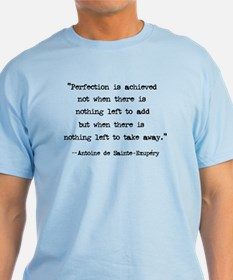 Perfection Quote Light Blue T-Shirt
