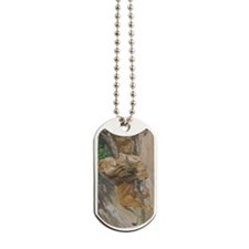 tkw_iPhone 4_4S Switch Case_1141_H_F Dog Tags