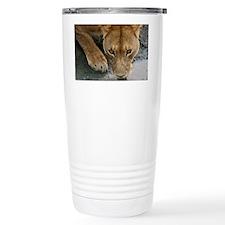 Serengeti Lioness Travel Mug
