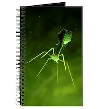 Bacteriophage, artwork Journal
