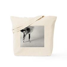 117149114 Tote Bag