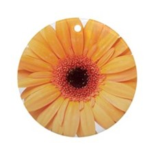 skd187408sdc Round Ornament