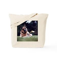 108149171 Tote Bag