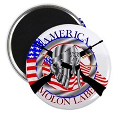 Molon Labe America 2nd Amendment Magnet