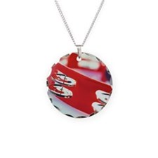 57443194 Necklace
