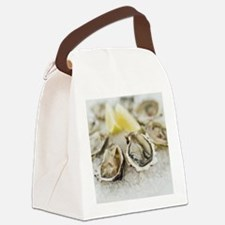 56569506 Canvas Lunch Bag