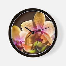 92573347 Wall Clock