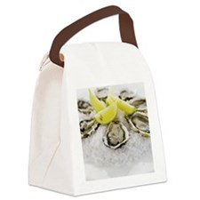 56569344 Canvas Lunch Bag