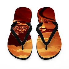 125141233 Flip Flops